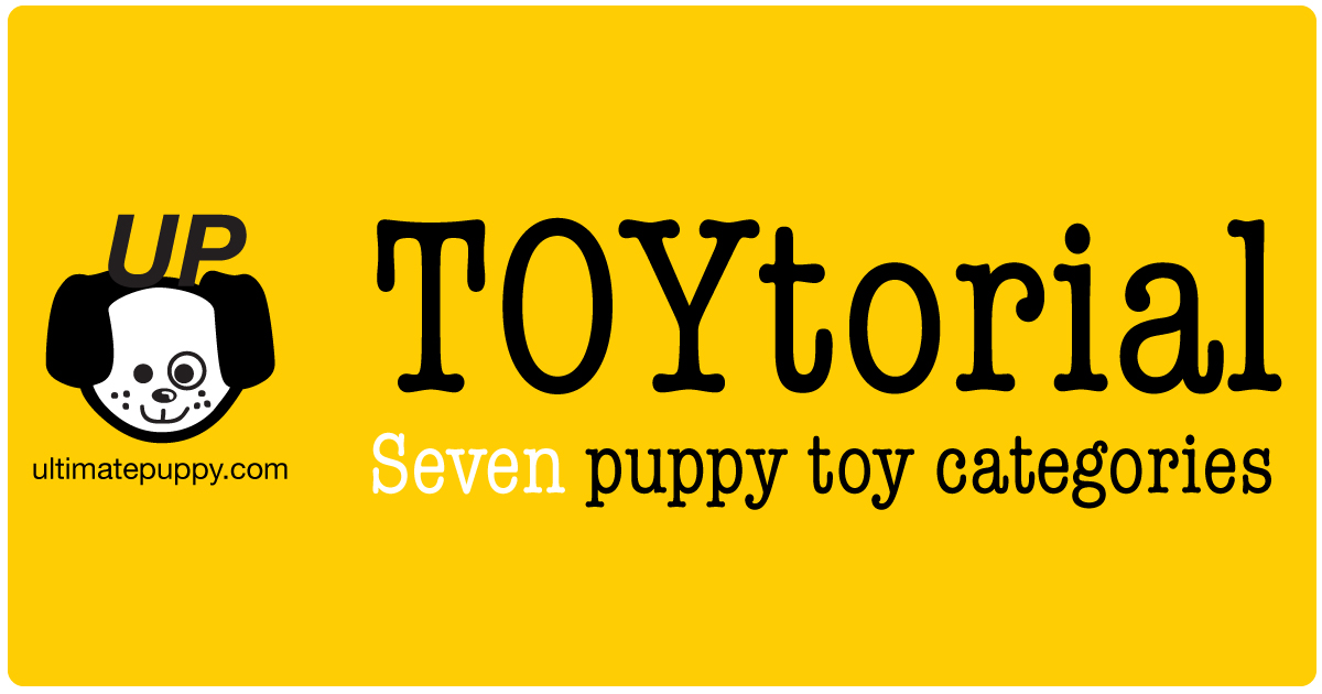 "This is a graphic that says ""TOYtorial, Seven puppy toy categories"". It also has the ultimatepuppy.com & logo on it"