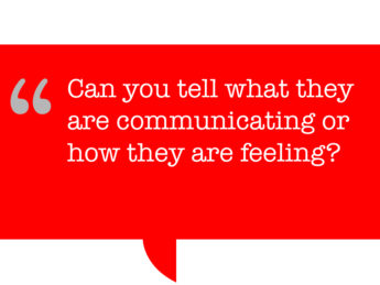 pull quote says: Can you tell what they are communicating or how they are feeling?